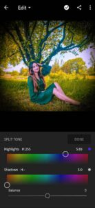 Adobe Lightroom MOD APK [Premium Unlocked] 4